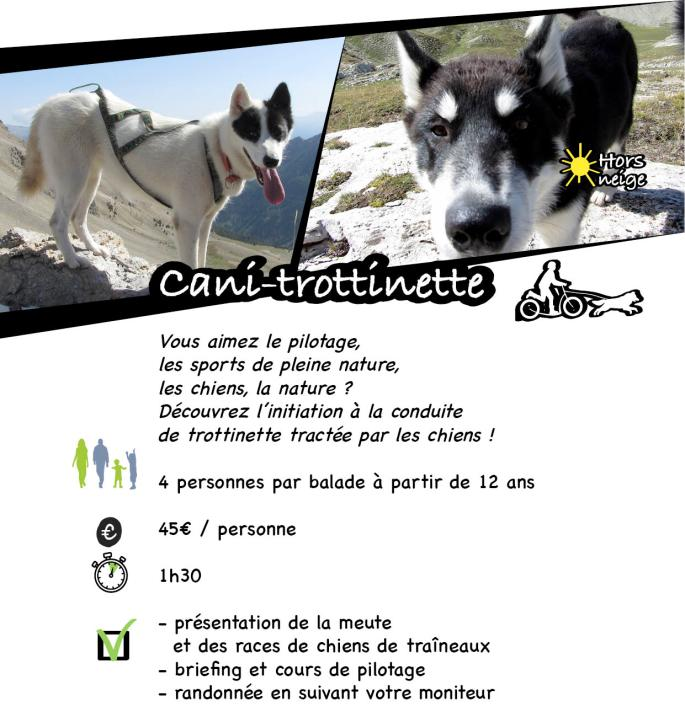 page cani-trotinette